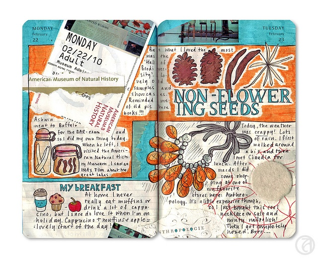 journal with sketches