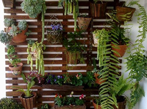 jardim-vertical-treliça-madeira-2.jpg 470×350 pixels