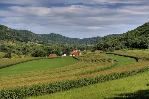 """A few reasons why an #OrganicValley intern is leaving the driftless region """"humbled, inspired, and motivated by the goodness encountered here."""""""
