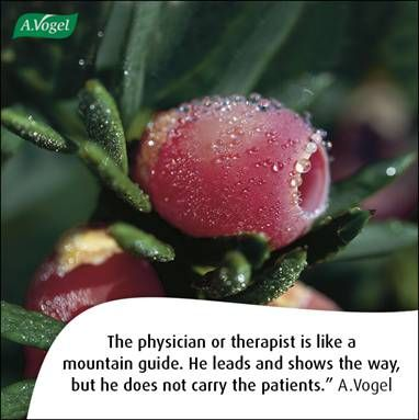 The physician or therapist is like a mountain guide. He leads and shows the way, but he does not carry the patients. A.Vogel