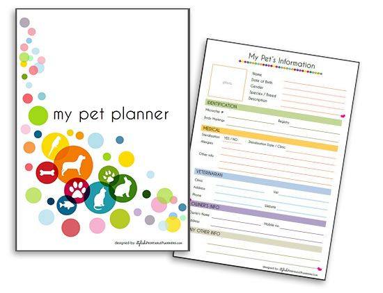 Organize Your Cat's Info in Style with a Downloadable Pet Planner