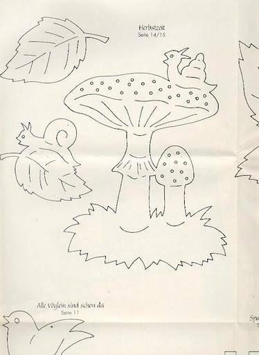 Schnecke auf Pilz