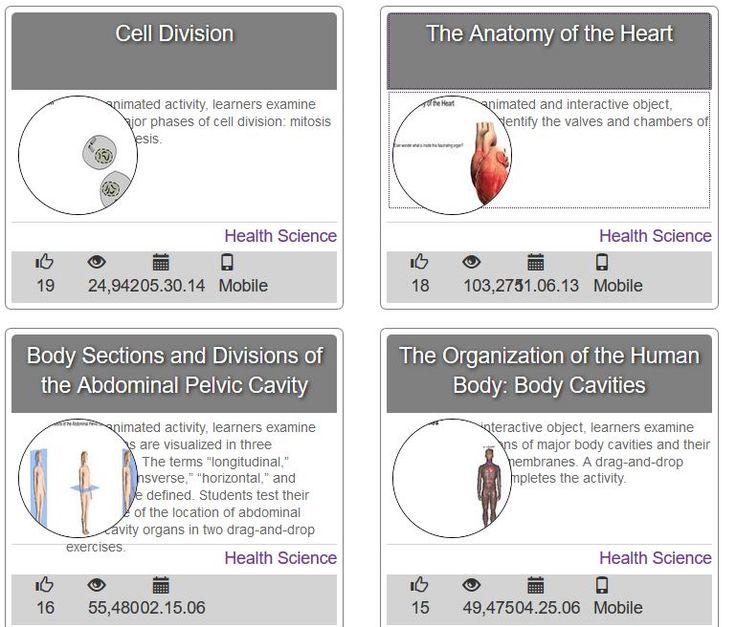 Wisc Online Anatomy