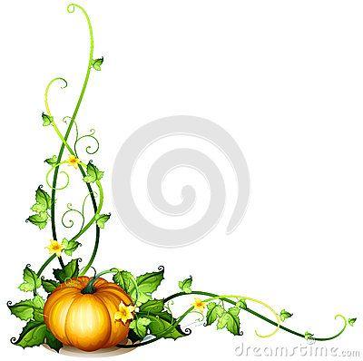 A pumpkin vine decor