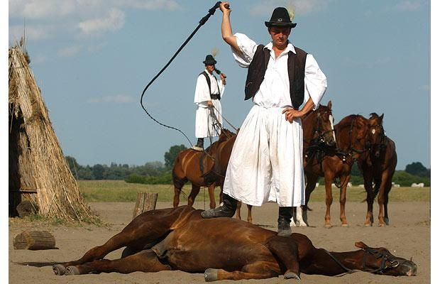 A traditional Hungarian horseman performs in a horse show on the Great Hungarian Plains, or Puszta, in Bugac