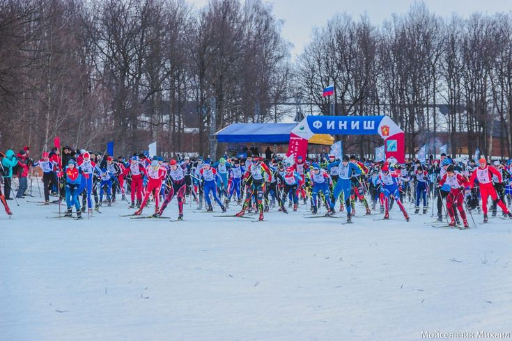Cross Country Ski  by Michael Moyseyanchik
