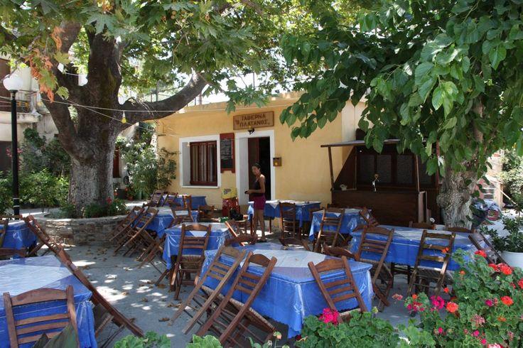 Taverna Platanos Photo from Agios Dimitrios in Ikaria   Greece.com
