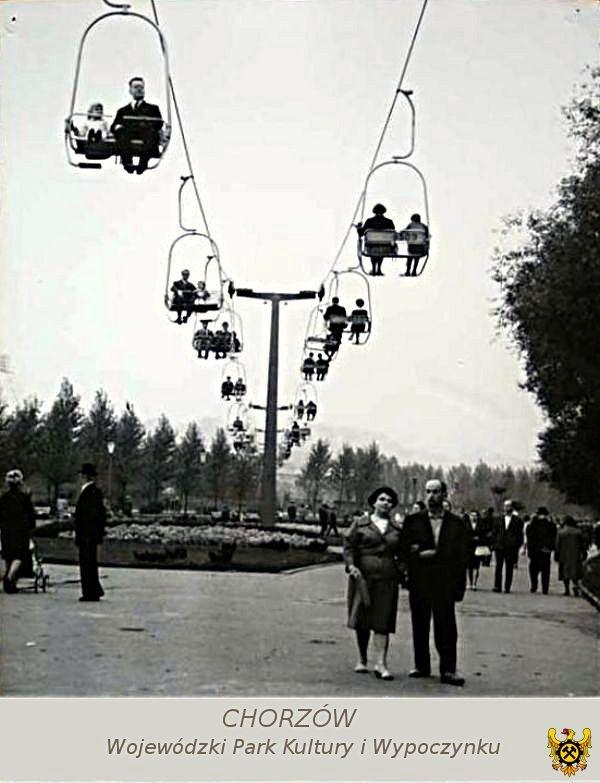 Elka- kolejka linowa nad Wojewódzkim Parkiem Kultury