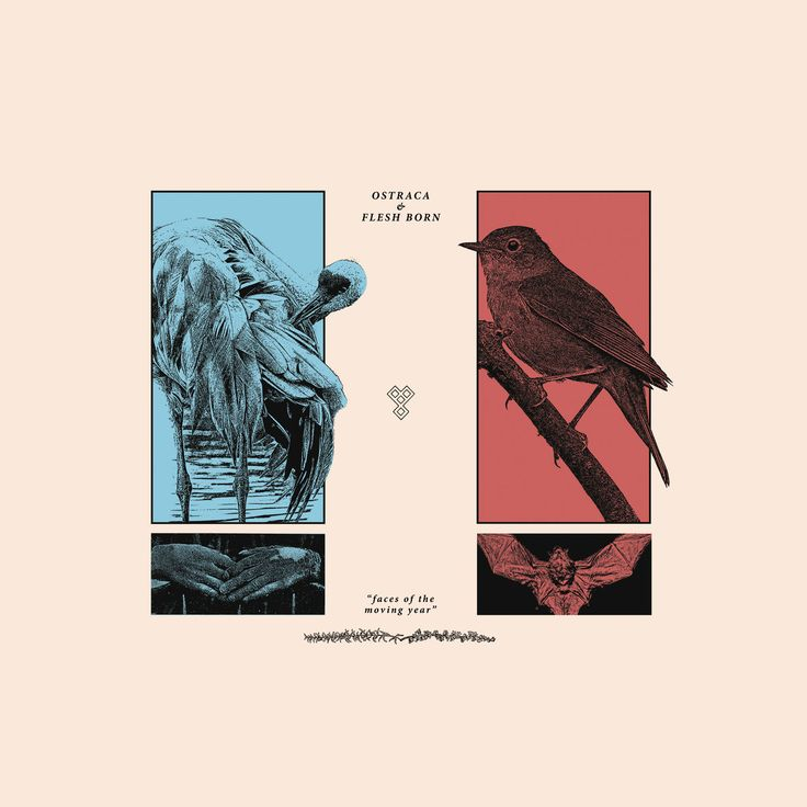 Ostraca + Flesh Born - Split (2017)
