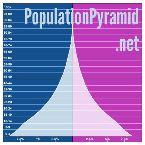 人口ピラミッド:  世界  2010
