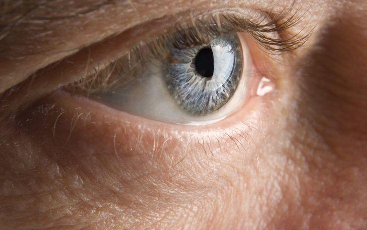 Azafrán en la perdida de visión por degeneración macular
