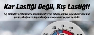 http://kislastigi.blogcu.com/kis-lastigi-secerken-nelere-dikkat-etmeliyiz/19876473