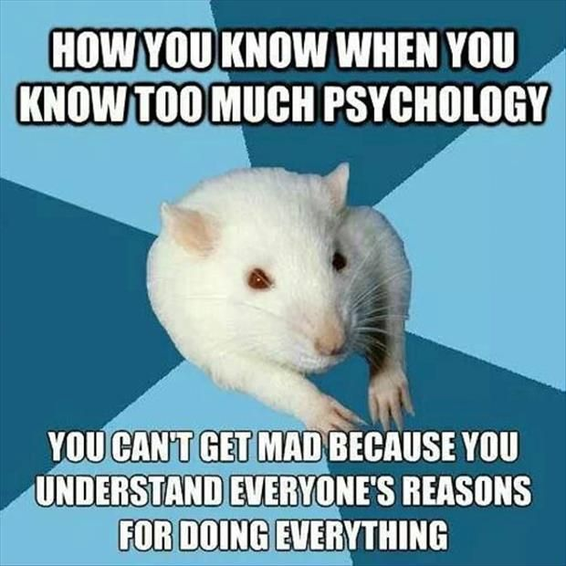 I want to get a PhD in Psychology but I have a situation...?