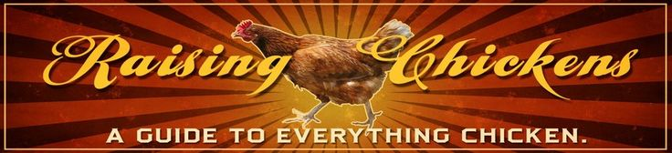 http://www.raising-chickens.org/poultry-breeds.html