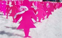 Pink Ladies in the Snow