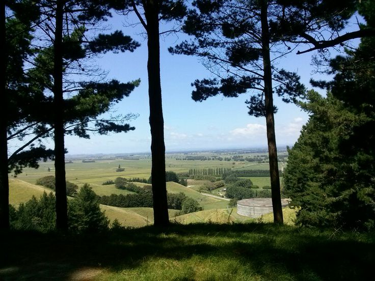 Papamoa Hills, New Zealand #nz #newzealand #bayofplenty