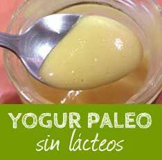 Yogur Paleo de frutas y sin lácteos   Paleosystem