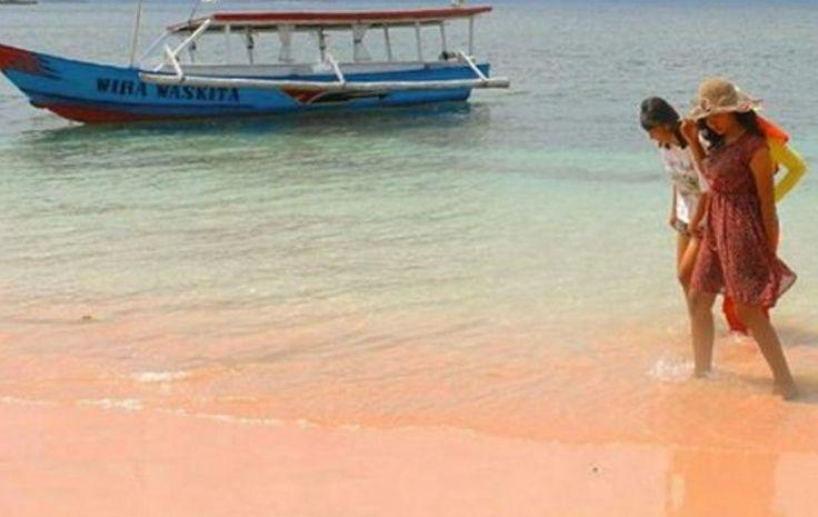 Pasir pantai pink lombok