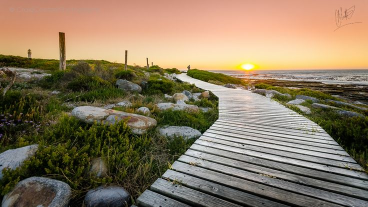 The Road to El Dorado  There's a little conserved piece of land up near the Slangkop Lighthouse in Kommetjie Cape Town, this wooden deck was constructed to keep the locals and tourists from trampling the natural beauty of the landscape in their quest to reach this magnificent lighthouse.  I loved the way this beautifully weathered wooden pathway created a leading-line into the sunset at approximately 8pm. This photo was taken in Kommetjie, Cape Town, South Africa on the 18th December 2013.