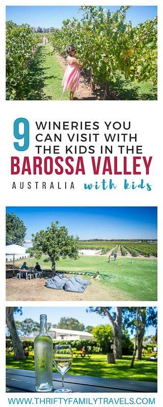 Not sure if you should visit the various Barossa Valley wineries with the kids? Click this link to find the best Barossa wineries which are family friendly. We also look at the other things to do in the Barossa as well as the best Barossa accommodation for families and how best to get around. | Barossa Valley Australia | Barossa Valley South Australia