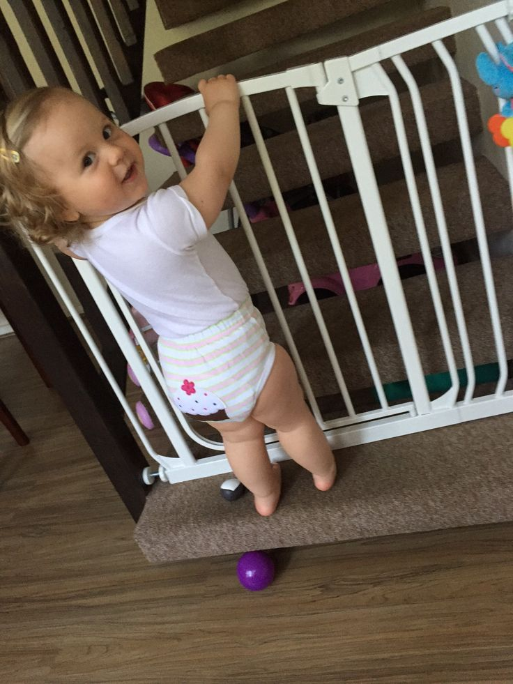 Baba Bear has little bums covered ~ Review
