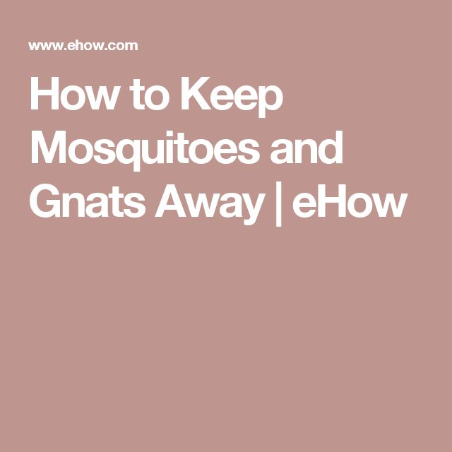 How to Keep Mosquitoes and Gnats Away | eHow