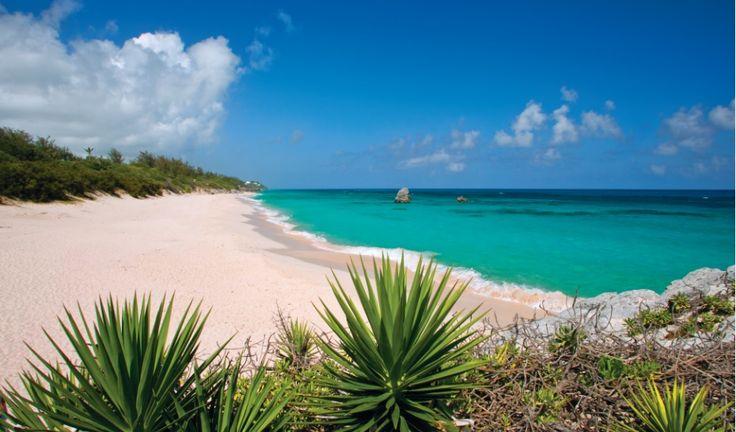 #Bermuda Long Bay #Spiagge http://www.gotobermuda.it/default/ Turismo, Spiagge, Mare