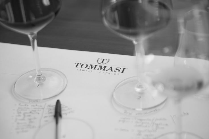 Tasting notes #TommasiTastings #Tommasi #wine