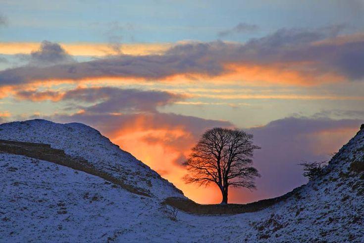 Photo of Sycamore Gap, Hadrian's Wall, Northumberland - Roger ...