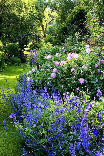 Beautiful spring garden. I love how natural and organic this garden is with the pop of color with the blue next to the soft pink roses....really lovely.
