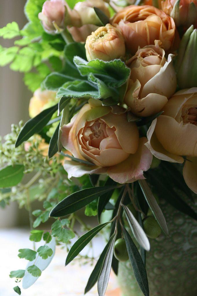 Mejores 1135 imágenes de Flowers and Gardens en Pinterest ...