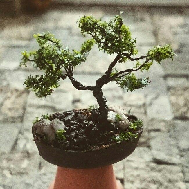 Dollhouse bonsai