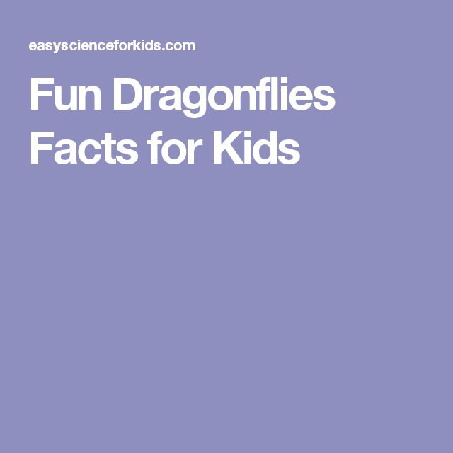 Fun Dragonflies Facts for Kids