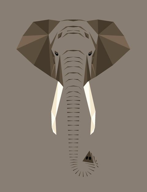 Elephant. Illustration © 2012 Mat Mabe.