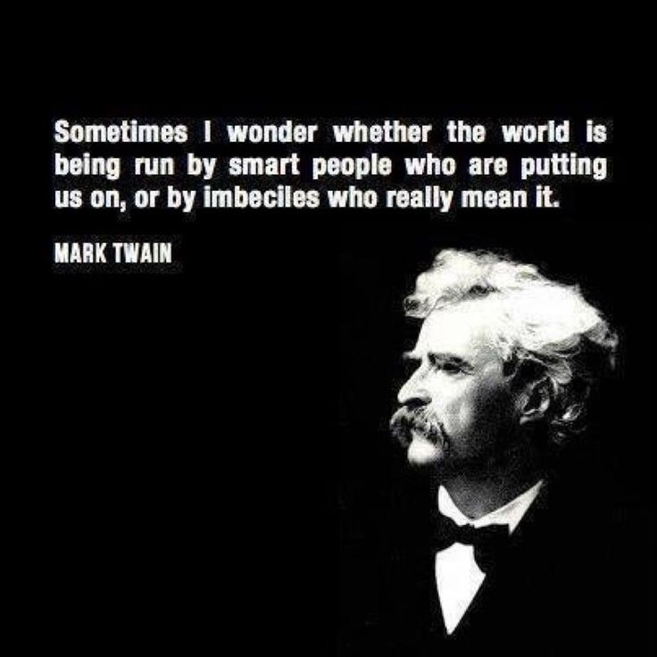 """""""Sometimes I wonder whether the world is being run by smart people who are putting us on, or by imbeciles who really mean it."""" ~ Mark Twain"""