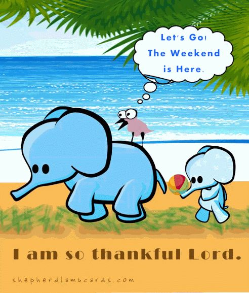 Elephant, calf, and his bird friend decided to enjoy this #weekend on beach. How do you going to enjoy this #Friday?