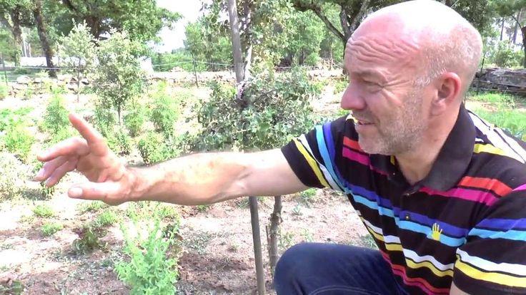 Piet Patron - Huysentruyt gives a garden tour outside his Likoké in France