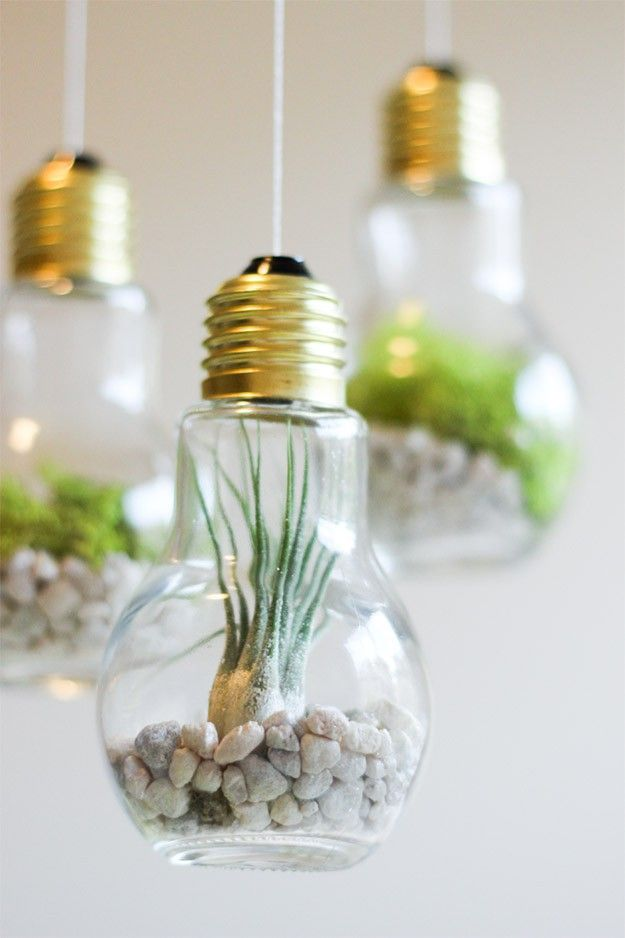DIY Light Bulb Terrarium | Cute DIY Projects for Her