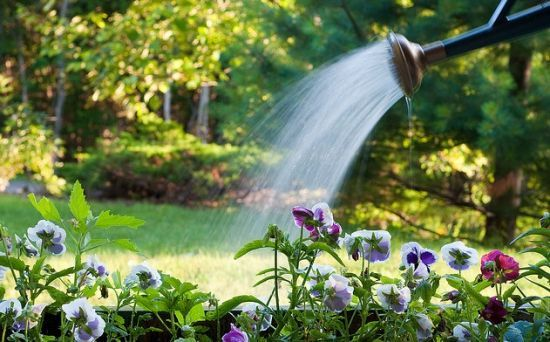 Garden irrigation methods, ranked by efficiency Organic Gardening Tips, Organic Farming, Irrigation Methods, Water Irrigation, Water Saving Tips, Pot Jardin, Self Watering Planter, Garden Nursery, Garden Care