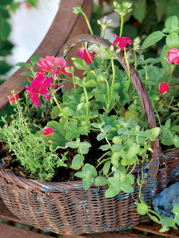 Herbs By The Basket