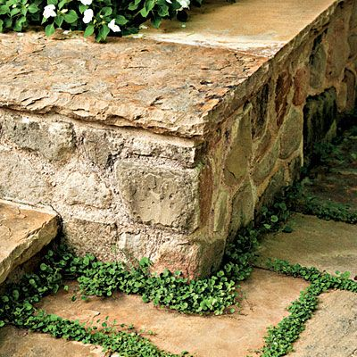 Retaining wall that doubles as a casual place to sit.