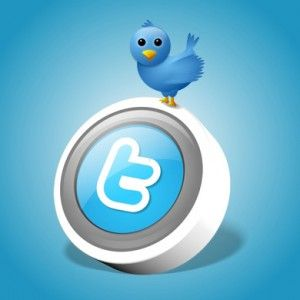 Now get to know some of the ways through which the twitter can work as the SEO services and increase the page rank automatically and with perfection.