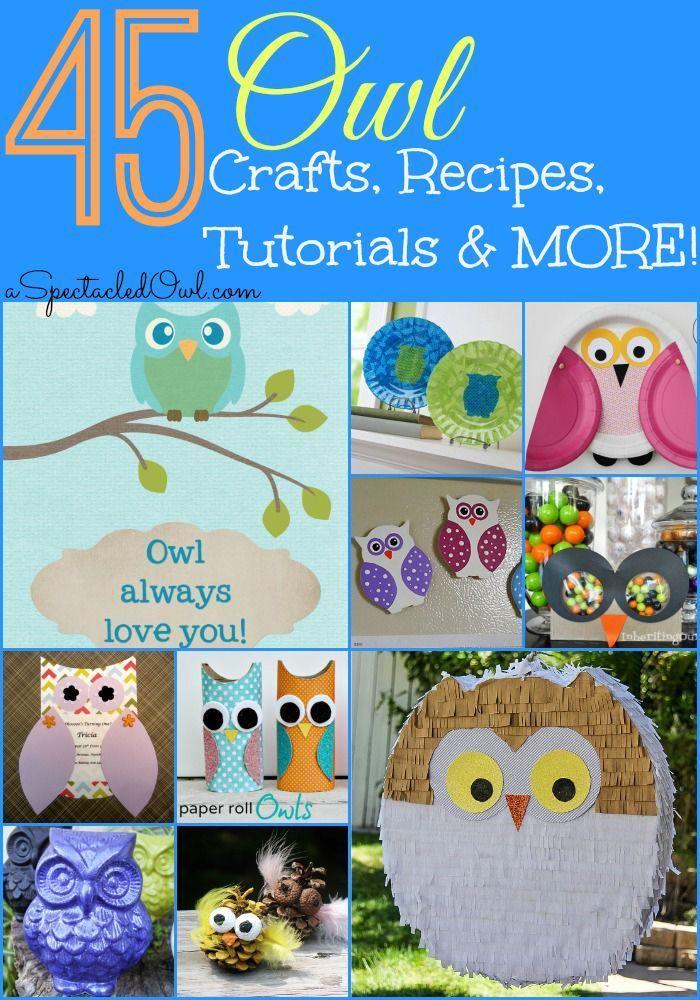 45 Amazing Owl Crafts, Recipes, Tutorials and MORE!