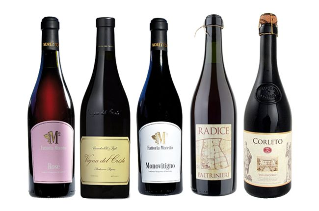 Five of the best Lambrusco wines to try – Decanter