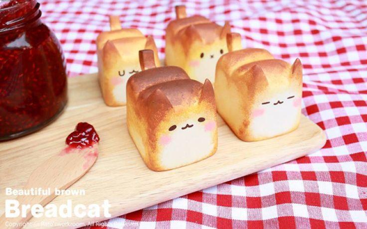 Zels als je geen diepgewortelde catlover bent, moet je toegeven dat dit broodje het schattigste is wat je ooit gezien hebt.