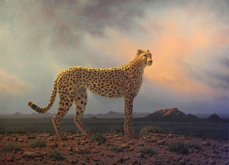 King of the desert  Oil on canvas  by Robert Koch