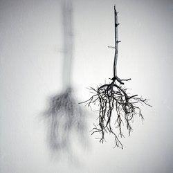 "Sun-Hyuk Kim, ""Naked Portrait 3"" Courtesy of the Oneiro gallery & artist"