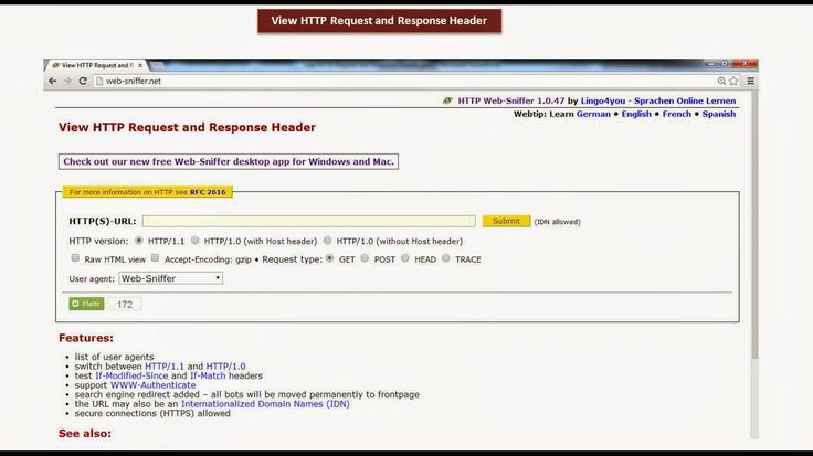 JAVA EE: View HTTP Request and Response Header - web sniffer