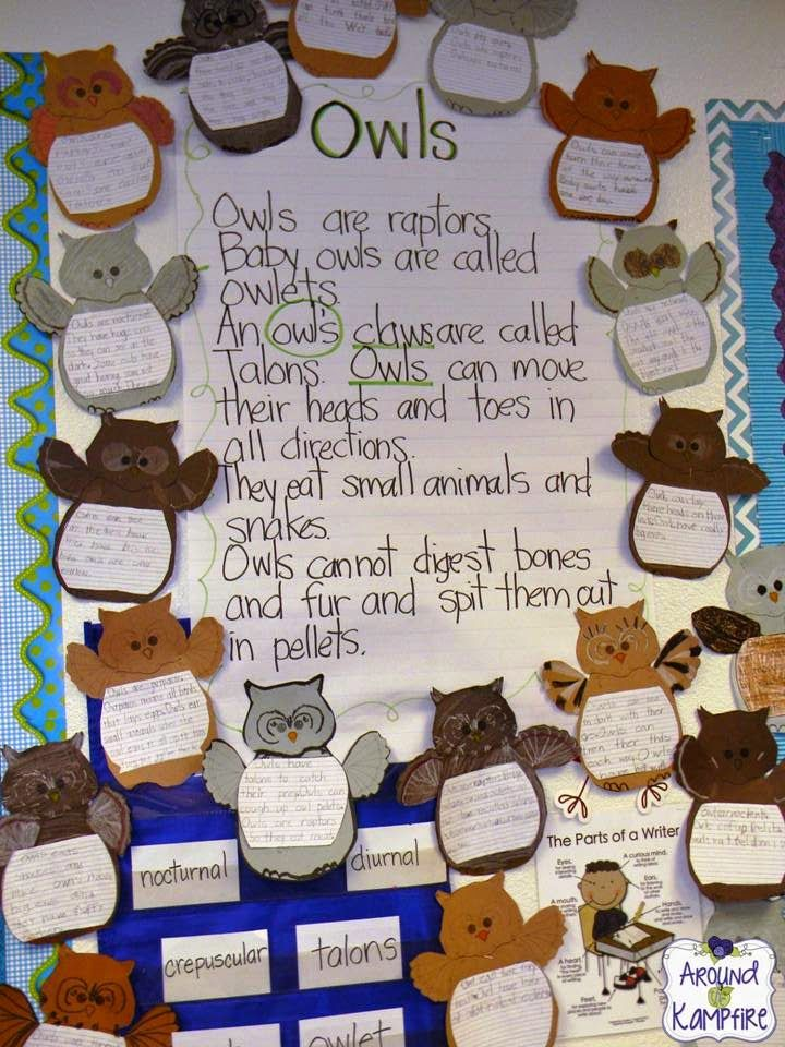 Owl facts anchor chart with a focus on plurals vs. contractions. Stop by this post for more easy fall activity ideas-plus a free shades of meaning sort.