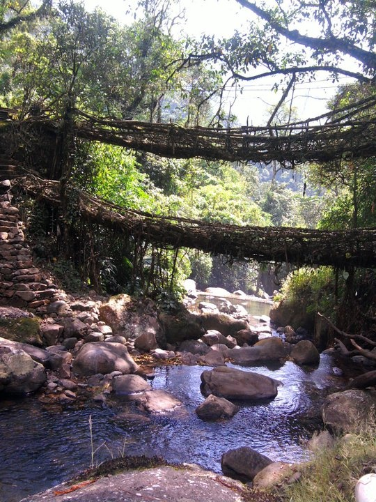 Double Decker Root Bridge, Cherrapunji‎, Meghalaya, India.
